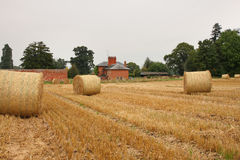 English Rural Landscape Royalty Free Stock Image
