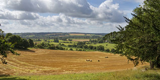 An English Rural Landscape in the Chiltern Hills Stock Photography