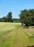 An English Rural Landscape Stock Photography