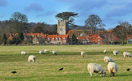 An English Rural Landscape. A Rural Landscape in the Chiltern Hills in England with grazing sheep and the village of Hambleden Royalty Free Stock Photography