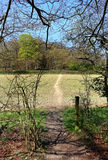 An English Rural Landscape in the Chiltern Hills Stock Image