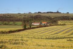 An English Rural Landscape with Farm Royalty Free Stock Images