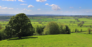 An English Rural Landscape in Somerset. A Landscape in Rural Somerset with blue sky and puffy clouds royalty free stock images