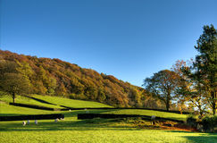 English rural scene in autumn Royalty Free Stock Photos