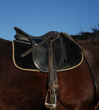 English saddle Royalty Free Stock Photos