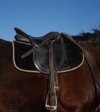 English saddle Royalty Free Stock Photos
