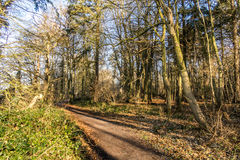 Free English Scenic Landscape In The Morning At Felbrigg, Norfolk Royalty Free Stock Photography - 92179647