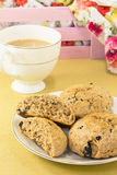 English scones of whole wheat  with tea Royalty Free Stock Image
