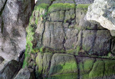 English Sea Wall Detail Devon England. Detail of ancient stone seawall on Tor Bay, near Paignton on the english riviera royalty free stock photos