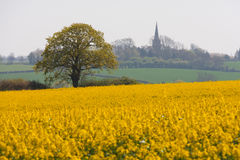 English spring landscape & village church, bedforf Stock Image