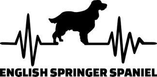 English Springer Spaniel heartbeat word. Heartbeat pulse line with English Springer Spaniel dog silhouette Royalty Free Stock Photo