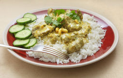 English style beef korma Royalty Free Stock Images