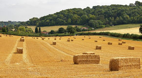 English Summer landscape with hay bales Stock Photos