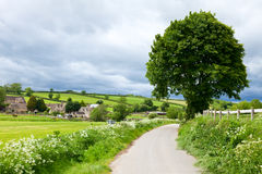English summer landscape Stock Images