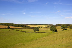 English summer landscape Royalty Free Stock Images