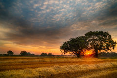 English Summer Sunrise Royalty Free Stock Photo