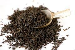 English tea with tea spoon Stock Photography