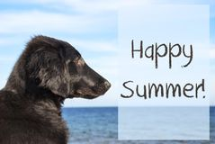 Dog At Ocean, Text Happy Summer Royalty Free Stock Photo