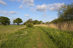 English towpath in may Royalty Free Stock Photo