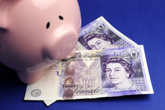 English twenty pound notes with piggy bank. Two English Bank of England Twenty Pound notes on blue background with pink piggy bank for savings and investment Royalty Free Stock Photos