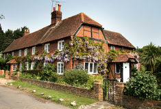 English Village House. Timber Framed English Village Houses covered in Wisteria Royalty Free Stock Images