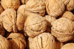English walnut. As background. Close-up stock photography