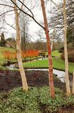 English Winter Garden Royalty Free Stock Photo