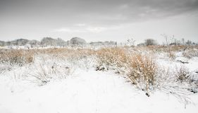 English Winter Landscape Scene Stock Image
