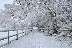 English winter snow Stock Photo