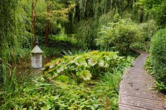 An English woodland Garden with boardwalk Royalty Free Stock Images
