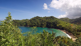 Englishman`s bay - Tobago island Stock Photography