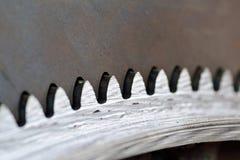 Engranaje de acero Imagen de archivo libre de regalías