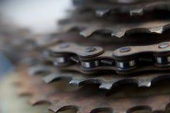 Engranajes de cadena de la bici Imagen de archivo libre de regalías
