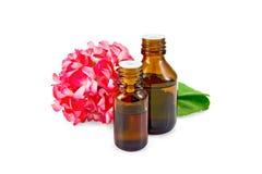 Engrase con los geranios rosados en dos botellas oscuras Fotos de archivo libres de regalías