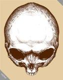 Engrave  alien skull hand drawn graphic vector illustration Royalty Free Stock Photo