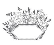 Engrave flowers vector frame sketch meadow design royalty free illustration