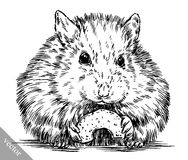 Engrave ink draw hamster illustration Royalty Free Stock Photo