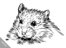 Engrave ink draw hamster illustration Royalty Free Stock Image