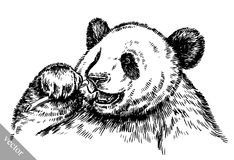 Engrave ink draw panda illustration Royalty Free Stock Images