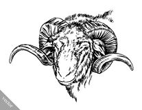 Engrave ink draw sheep illustration Royalty Free Stock Photography