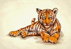 Engrave ink draw tiger illustration Stock Photo