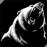 Engrave isolated bear illustration vector sketch linear art royalty free stock photo