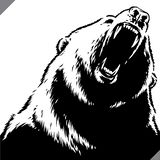 Engrave isolated bear illustration vector sketch linear art royalty free stock images