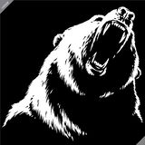 Engrave isolated bear illustration vector sketch linear art stock photography