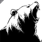 Engrave isolated bear illustration vector sketch linear art royalty free stock photos