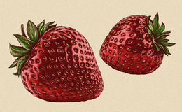 Engrave isolated strawberry hand drawn graphic illustration Royalty Free Stock Photography