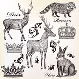 Engraved animals vector set Stock Photos