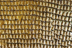 Engraved buddha images on Pindaya caves' wall - Myanmar Stock Photos