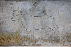 Engraved bull on fresh plaster Stock Photos
