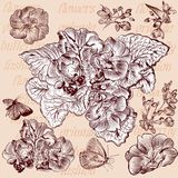 Engraved flowers set for design Stock Photos